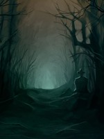 The Woods Of Night: Book Three Of The Kasai Series